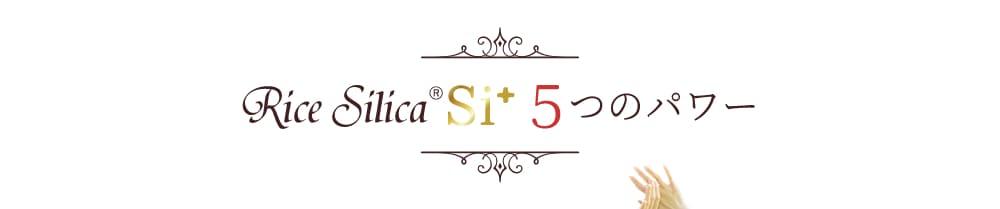 Rice SilicaR Si+ 5つのパワー