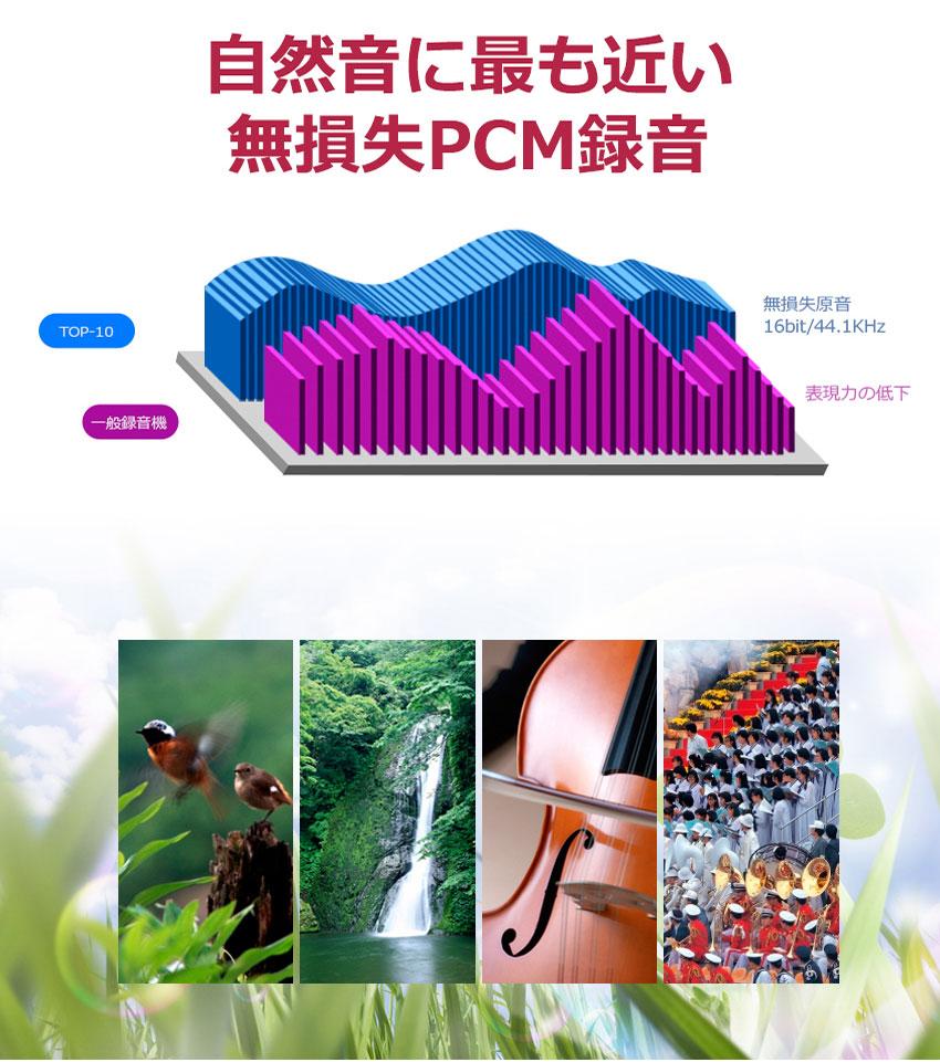 自然音に最も近い無損失PCM録音 仕掛け録音ボイスレコーダー 8GB | TOP-10