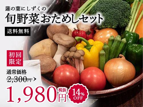 蓮の葉にしずくのおためし便 送料無料 初回限定 1,980円 48%OFF