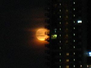 [画像:満月]