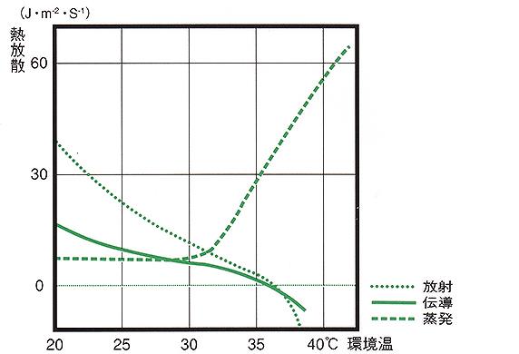 熱放散を担う放射・伝導・蒸発