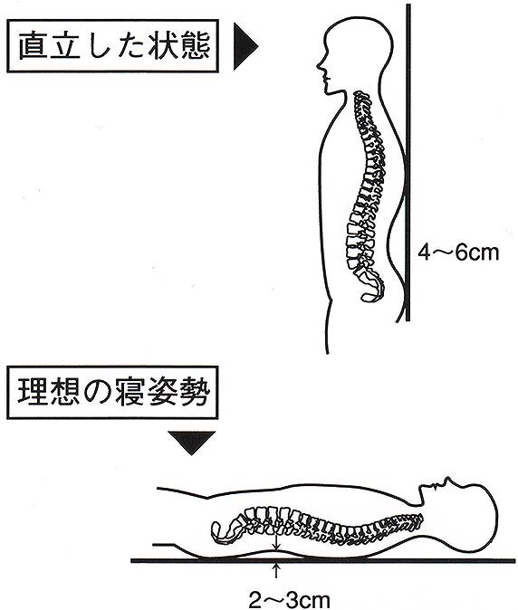 肩や腰に優しい理想の寝姿勢