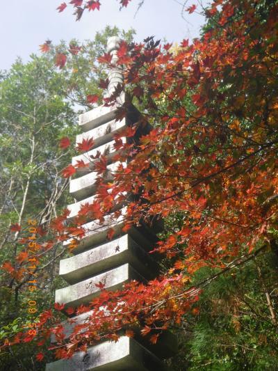 2015紅葉―三瀧寺3
